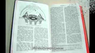 Bible in Current SWAHILI / Language Interconfessional Translation / BIBLIA