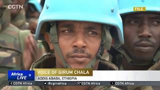 Ethiopia Military Concerns