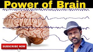 How To Activate Your Brain Power In Tamil | Motivational Esh Vlogs