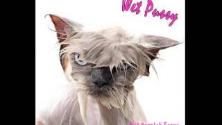 Cat Scratch Feeva by Wet Pussy