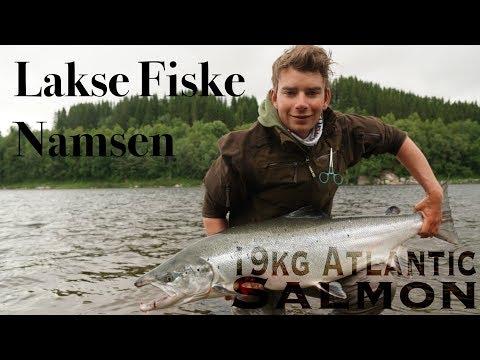 Xxx Mp4 48 4 Kg Laks På To Døgn Salmon Fishing Namsen River 19kg Atlantic Salmon 3gp Sex