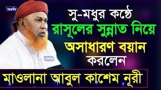 bangla waz mawlana Abul Kashem Nuri Sub. Rasul (S.) Er Sunnot