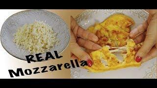 طرز تهیه پنیر پیتزا خانگی (پنیر موزارلا) در منزل | کشدار و با بهترین طعم و مزه