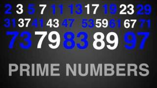 Prime Numbers Rap Song Typography (Math)