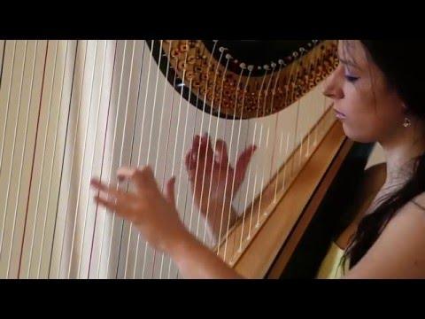 Xxx Mp4 Beauty And The Beast Alan Menken Amy Turk Harp 3gp Sex