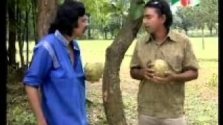 Diabari Harirampur : Vober Hat 78