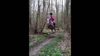 Slow motion welsh A jumping Blackhill Nutmeg