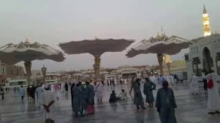 Automatic Umbrella opening.   Masjid al Nabawi ( Prophet's Mosque), Madina, Saudi Arabia