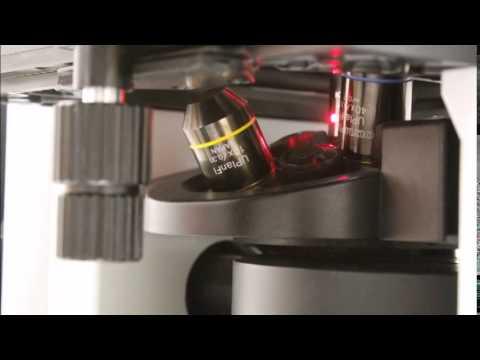 Microscopia Confocal de Varredura a Laser