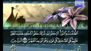 القرآن الكريم - الجزء الثالث عشر - تلاوة سعد الغامدي - 13