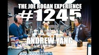 Joe Rogan Experience #1245 - Andrew Yang