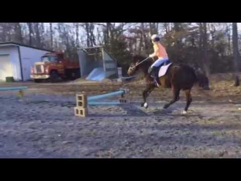 Xxx Mp4 My Sister RIDING MY HORSE 3gp Sex