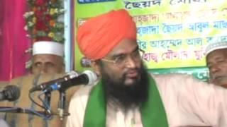 amazing bangla waz by ALLAMA SAYED SHAMSHUDDUHA BARI-পীর ছাহেব দরবারে বারীয়া শরীফ, 01879381046