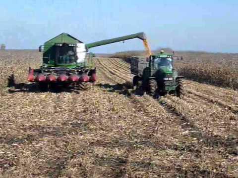 Kukorica aratás Corn Harvest 2010. Derekegyház