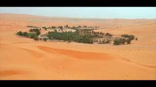 السعودية ... إكتشف طبيعتها  |  Saudi Arabia ... Discover its Nature