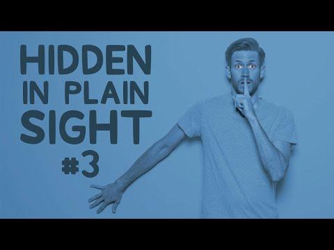You ll Never Guess Where He s Actually Hiding • Hidden in Plain Sight 3