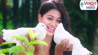 2017 Telugu Songs || Back 2 Back Hit Songs || Volga Videos