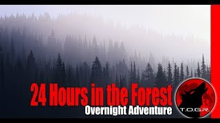 24 Hours in the Forest - Overnight Adventure - 4k