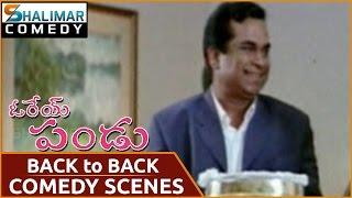 Orey Pandu Movie || Brahmanandam Back To Back Comedy Scenes || Shalimarcomedy