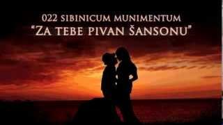 022 - Pivan za tebe šansonu (Večeri dalmatinske šansone 2013.)