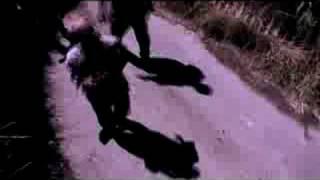 Bong Of The Dead (Unofficial teaser)