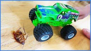 Monster Truck CRUSHES GiANT ROACH😝