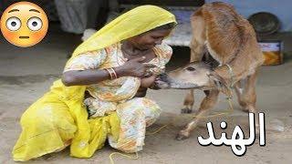 أغرب ما يمكن أن تشاهده في الهند   غرائب وعجائب المجتمع الهندي