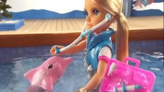 Nancy e os Golfinhos