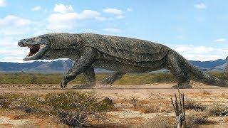 When Giant Lizards Ruled Australia - Megalania