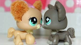 LPS Love Doctor 101 S2 Episode 5: Double Dates