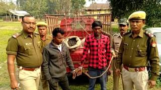 police operation in morigaon