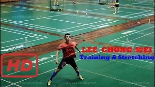 Love badminton    Nice Camera to learn Lee Chong Wei's footwork and stretching after training