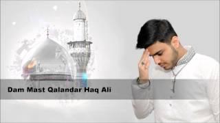 Dam Ali Ali a.s (Title Track) - Messam Tammar Haider - Manqabat Album 2015