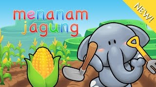 Lagu Anak Indonesia | Menanam Jagung
