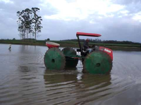 semeando arroz