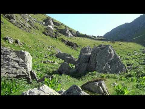 Gora Restelica Sar Planina bu Teferic