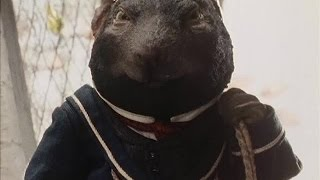 The Wind in the Willows S01E09 Wayfarers All