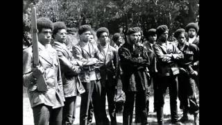 Black panthers documentary G4 Copee