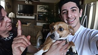 SURPRISING MY MOM WITH A NEW PUPPY!! (SHE WAS PISSED)