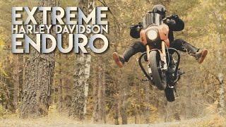 Crazy HD-Enduro   320kg heavy Harley Davidson in forest   4K