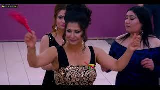 الفنان عمار - رقص عربي عرس عبدالله و سنا | Amar - Dilana Arabic By Dilocan Pro