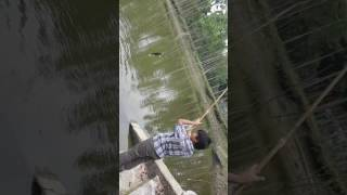 Fish escape from the hook  (funny video part 🐳 2
