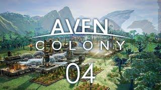 AVEN COLONY #04 AZARA FALLS - Let