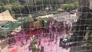 Ahmedabad's 2017 Holi: Green Acres.