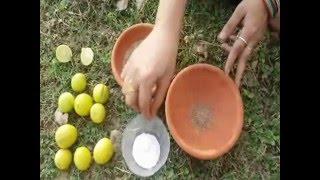 भूख न लगने का देसी घरेलु उपचार | Bhookh Na Lagna or Iska Desi Upchaar