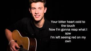 Stitches - Shawn Mendes Lyrics