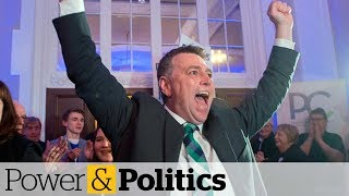 PCs win most seats in history-making P.E.I. election, followed by Greens | Power & Politics