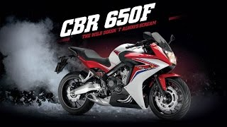 Honda CBR 650F | First impressions | Test ride and full review