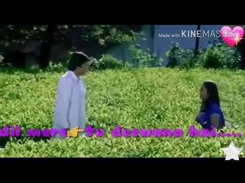 Xxx Mp4 Dil Mere Tu Deewana Hai Whatsapp Status Video 3gp Sex