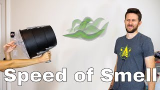 What is the Speed of Smell? Is It Possible to Actually Launch Smell With a Smell Cannon?💨